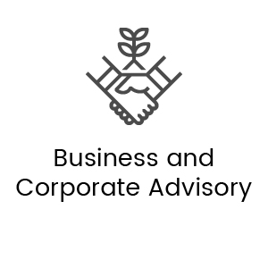 Business and corporate advisory